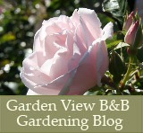 Garden View Bed and Breakfast Blog
